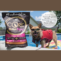 Brand Awareness: Wellness® Core® RawRev™ - Balanced Nutrition with the Power of Raw