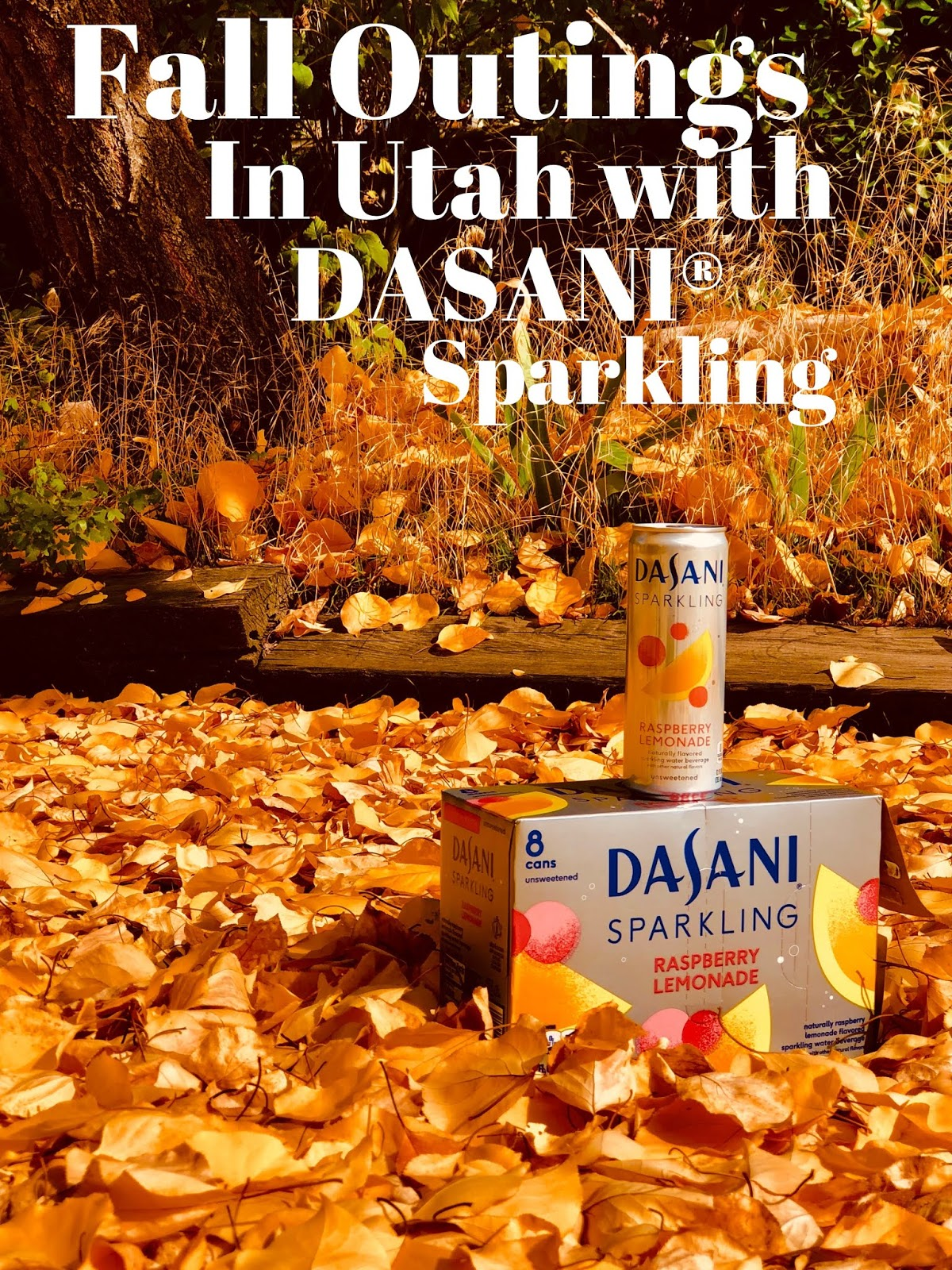 apple picking, DASANI®, DASANI® Sparkling, fall outings in utah, gardener village, how to keep hydrated with DASANI®, road trips, what to do in utah,