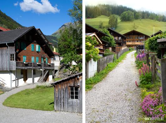 Idyllische Schweizer Landschaft im Waadtland