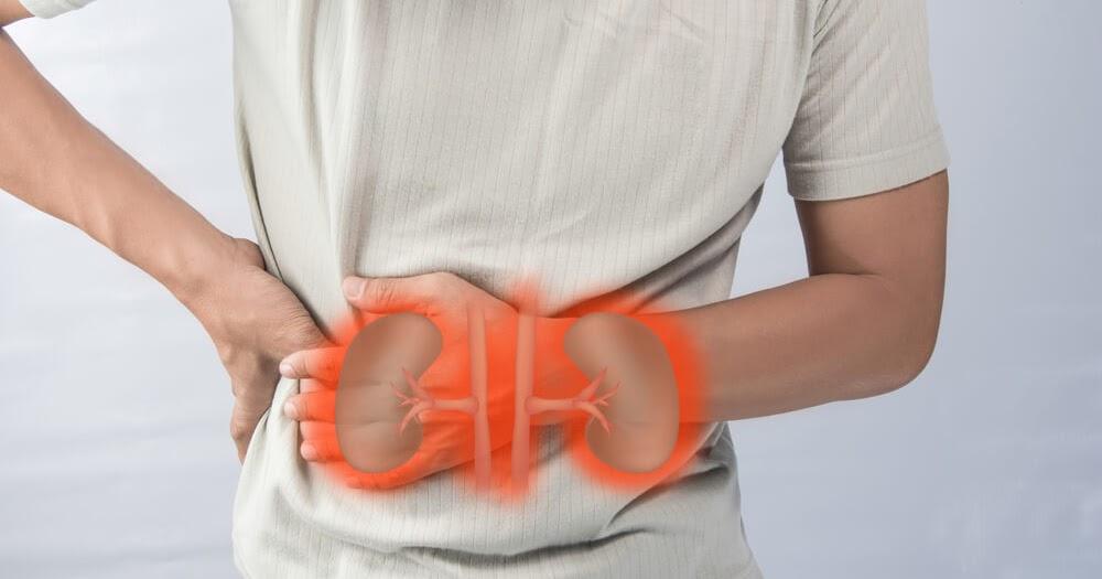 Cara Mengobati Sakit Ginjal - Info Kesehatan | Yuslim Blog