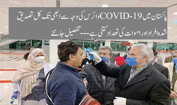 پاکستان میں کورونا وائرس کی وجہ سےابھی تک کل  تصدیق شدہ افراداور اموات کی تعدادکتنی ہے (COVID-19)