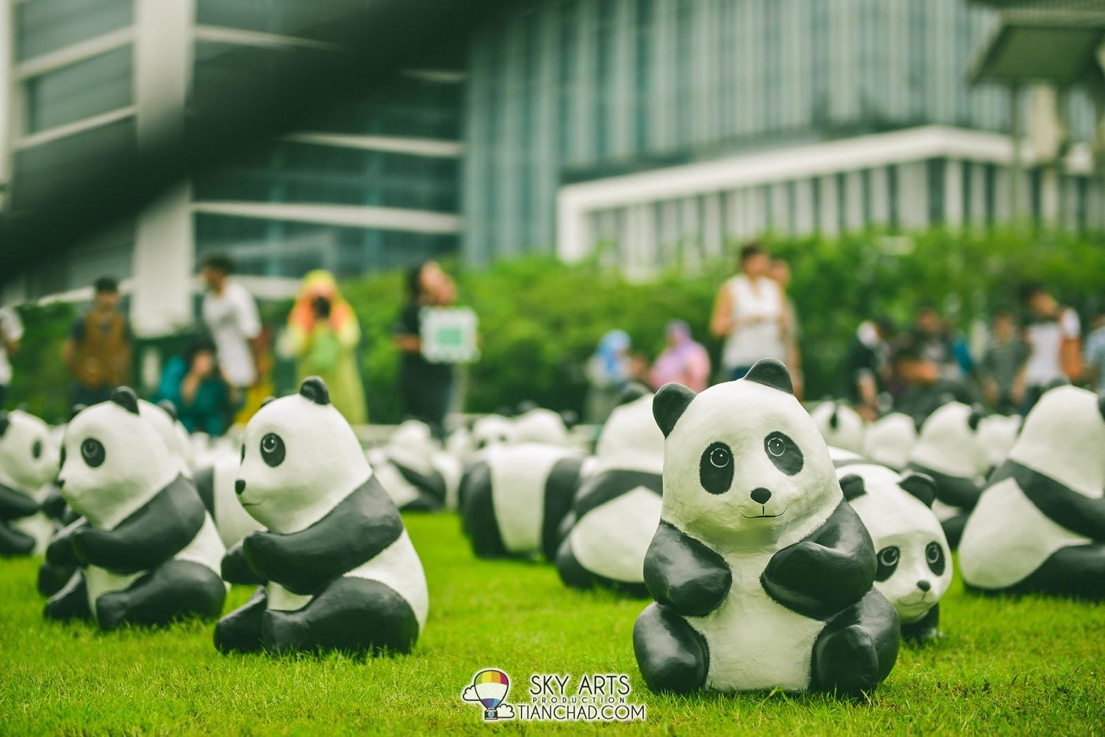 1600 Pandas Flash Mob @ Perbadanan Putrajaya, Malaysia #1600Pandas