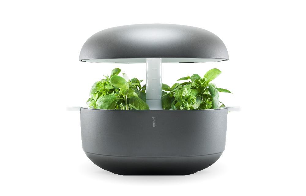 il giardino idroponico di design per coltivare in casa senza terra