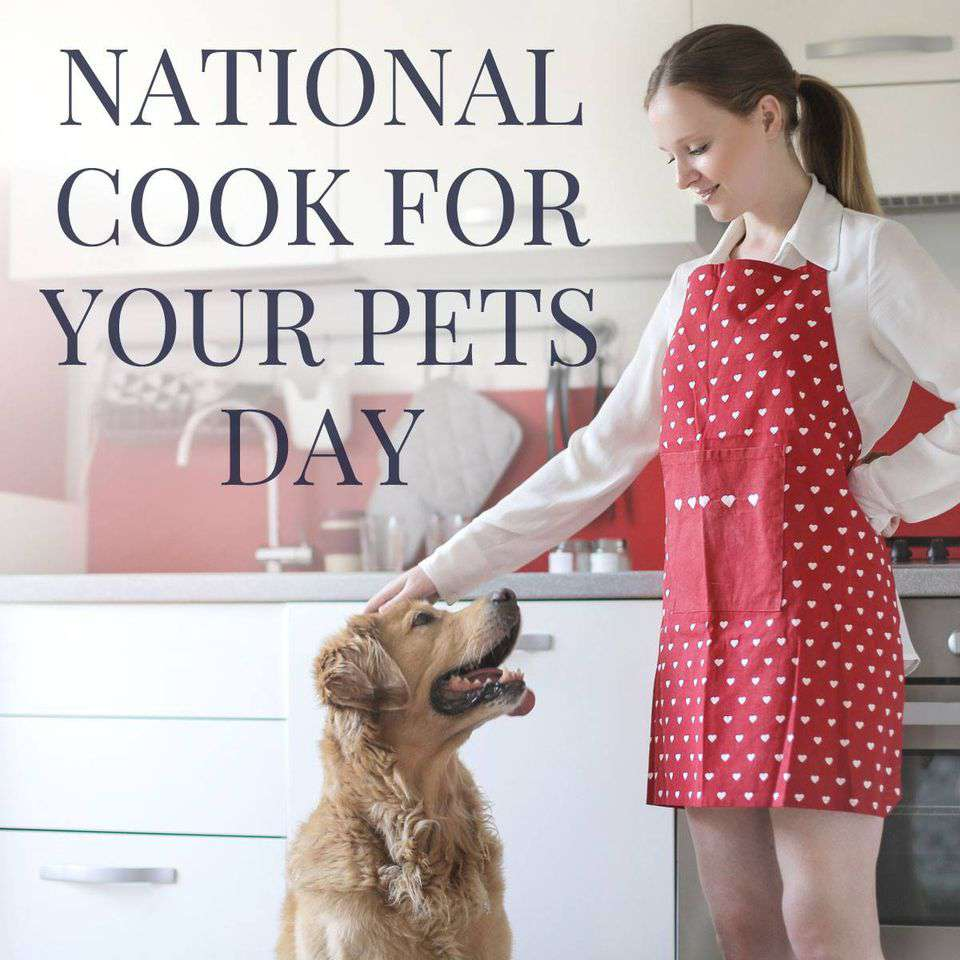 National Cook For Your Pets Day Wishes Photos