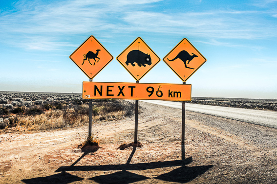 Australia. Un destino para cada mes del año