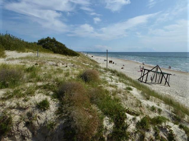 tratto della spiaggia di Smiltynė a neringa