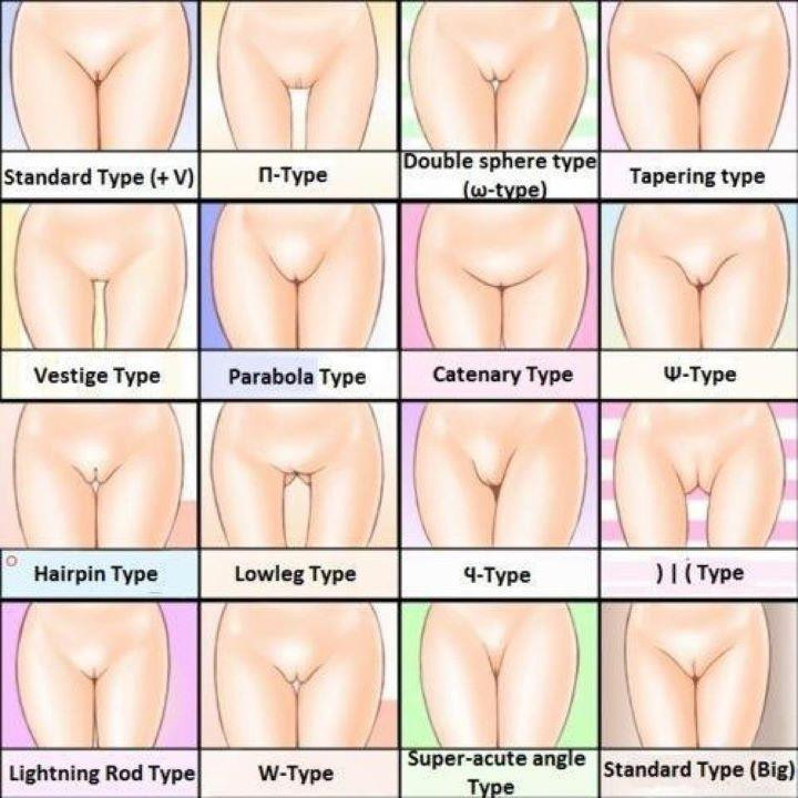 There Are Apparently Five Different Types Of Vagina So Are