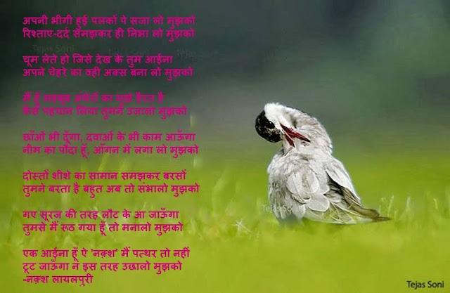 अपनी भीगी हुई पलकों पे सजा लो मुझको Urdu Gazal By नक़्श लायलपुरी
