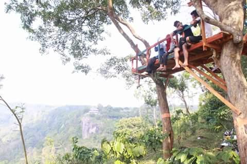 Rumah Pohon Permata Bukit Kendeng