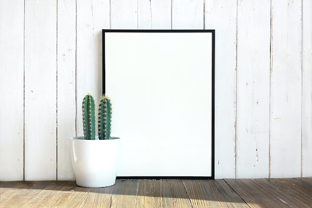 The image shows a white wooden background with a blank canvas and cactus in front of it. The cactus is in a white vase and the canvas frame has a black border.