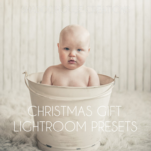 SC Christmas Gift Lightroom Presets