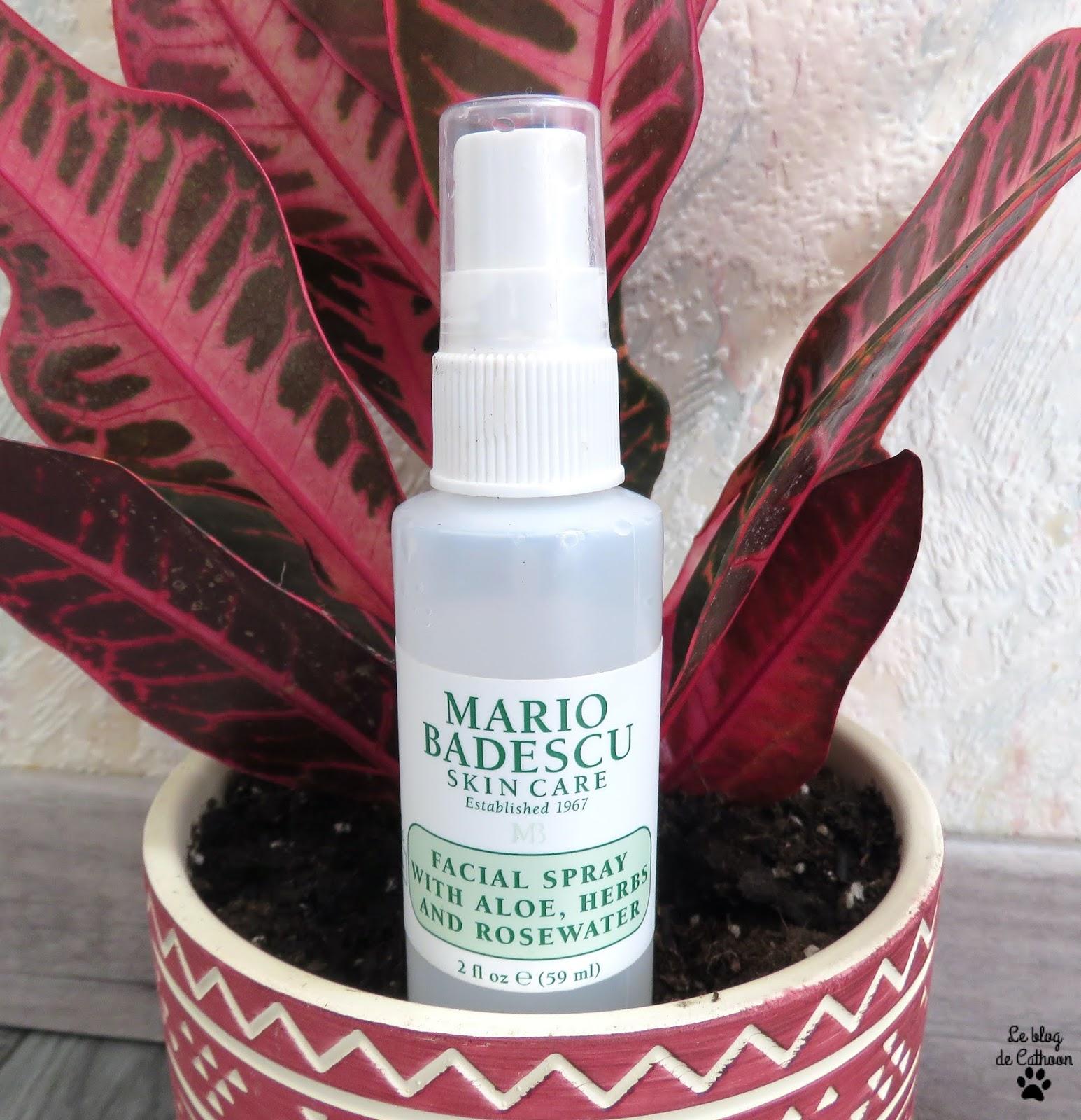 Facial Spray With Aloe Herbs and Rosewater - Mario Badescu