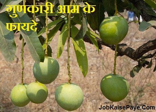 Benefits of quality mangoes
