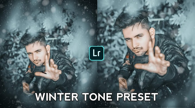 Winter Tone Preset Free Download For Lightroom Mobile