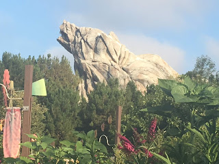 Grizzly Peak Mountain Disney California Adventure
