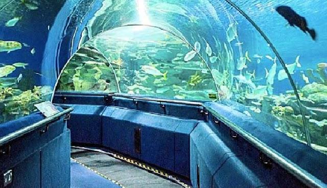 3. Aquaria KLCC