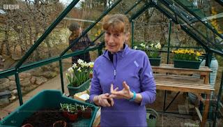 Carole Baxter