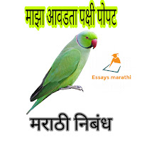 my favourite bird parrot essay in marathi