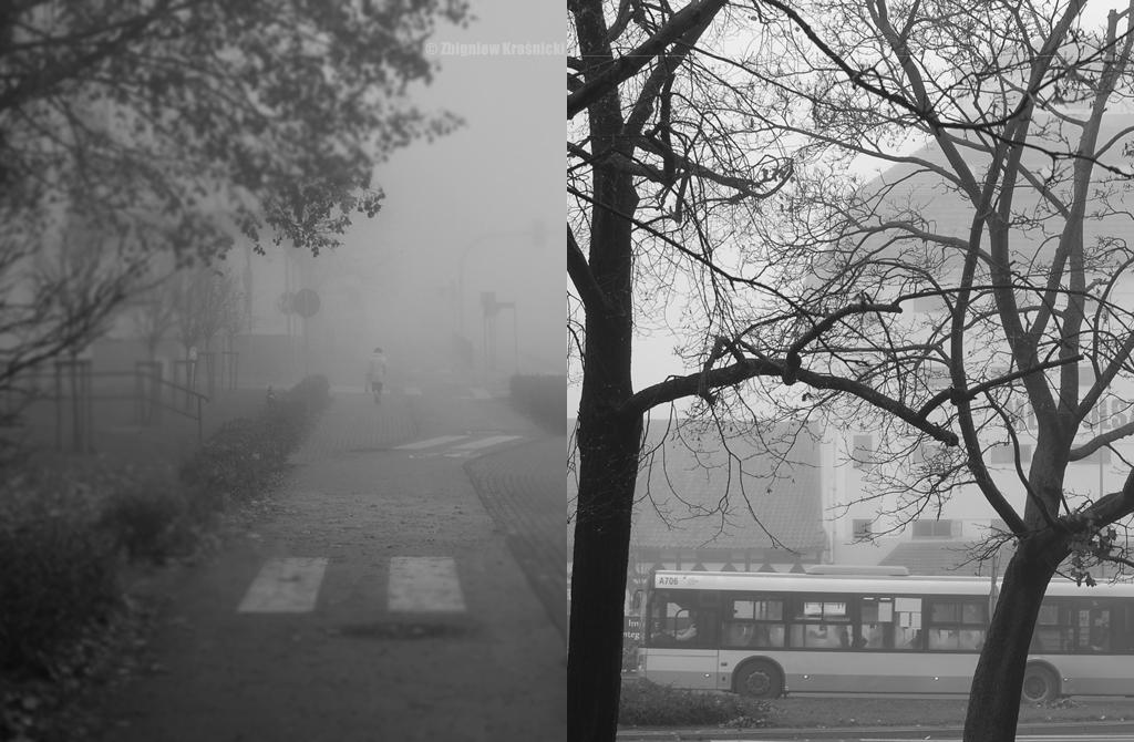 Olsztyn, mgła