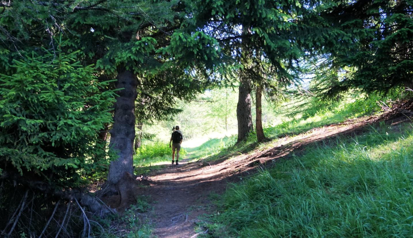 Heading north from Col de la Couillole