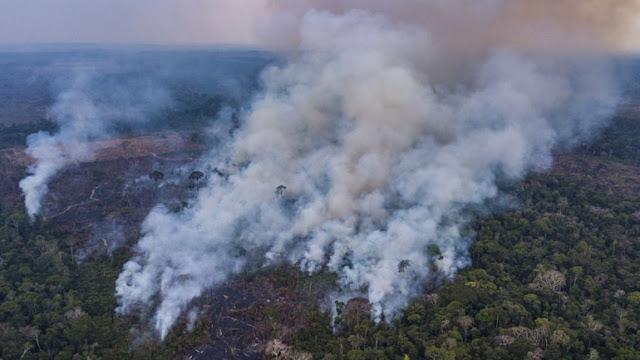 Συνεχίζουν το καταστροφικό τους έργο οι πυρκαγιές στον Αμαζόνιο