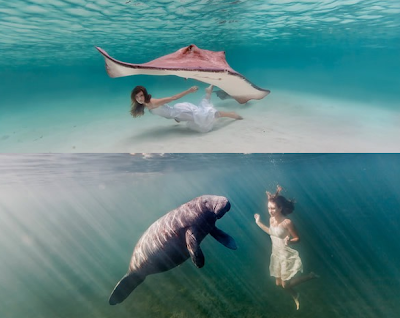 "<img src=""sacha_mermaid_5.png"" alt=""sacha_mermaid_5"">"