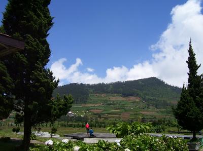 Akomodasi Dan Layanan Yang Tersedia Di Kawasan Wisata Dieng Wonosobo