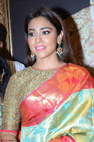 Shriya Saran Looks Stunning in Silk Saree at VRK Silk Showroom Launch Secundrabad ~  Exclusive 068.JPG