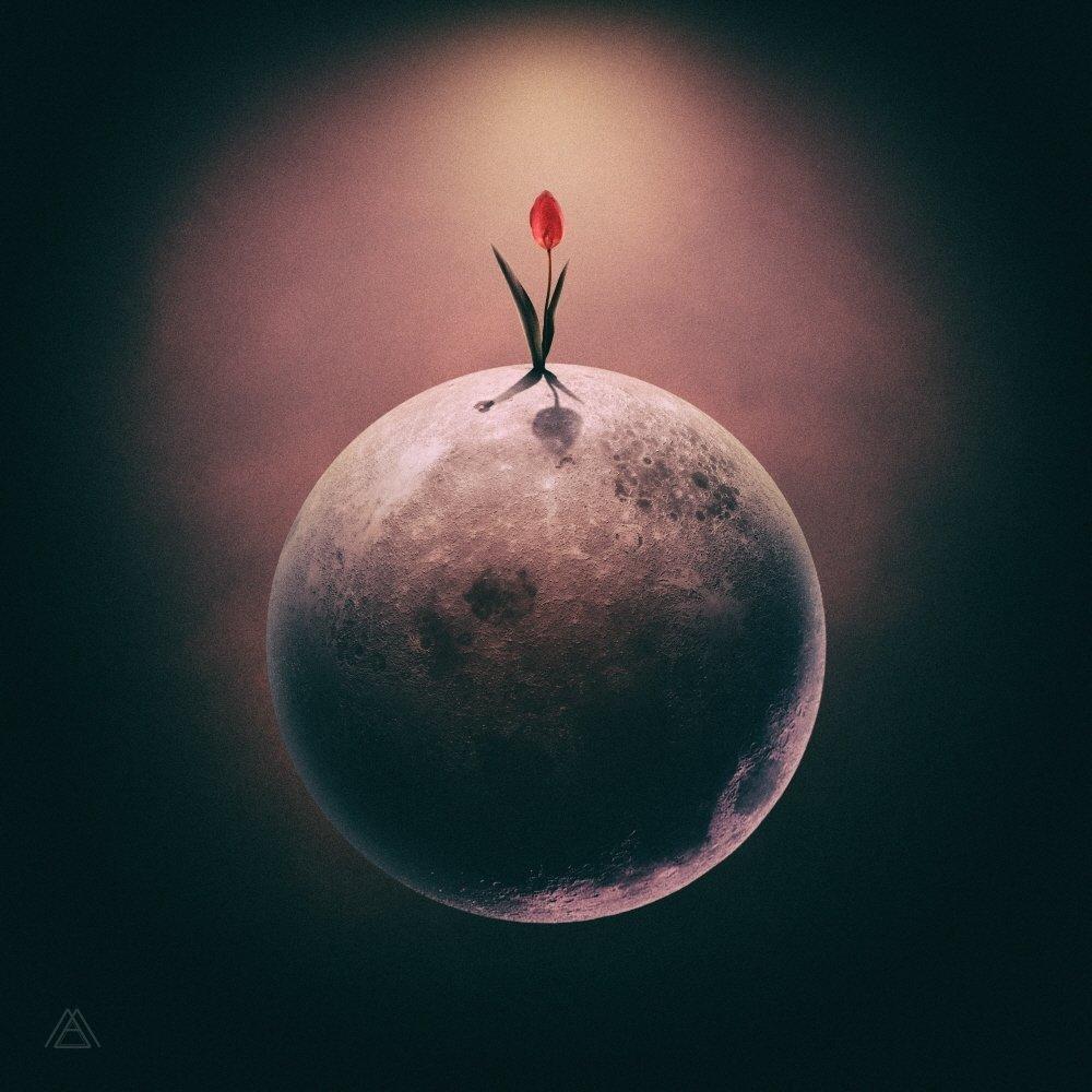 MAKTUB – Red Moon : The Flower – Single