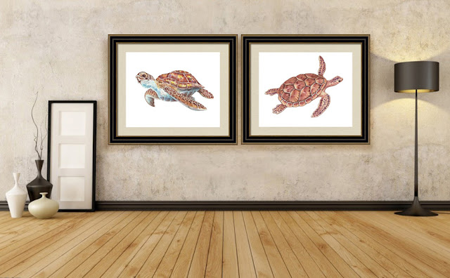 Giant Sea Turtle Watercolor Paintings In Interior Decor of a Beach House Style
