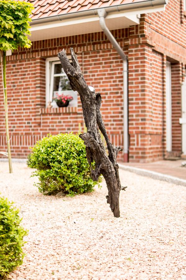 Blog + Fotografie by it's me | fim.works | Ein Garten im Norden | Mooreiche im Kiesbeet