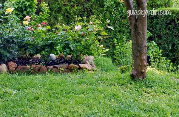 5 opciones para sustituir el c sped sin renunciar a un for Diseno de jardines pequenos sin cesped