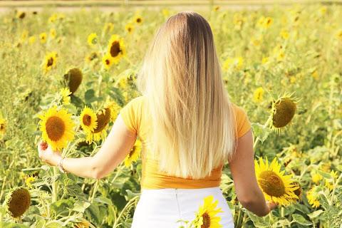 Moje włosy - sierpień 2018 | Piramida pielęgnacji włosów - czytaj dalej »