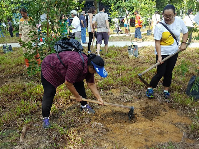 Dream homes tree plantation drive singapore for Digging ground dream meaning