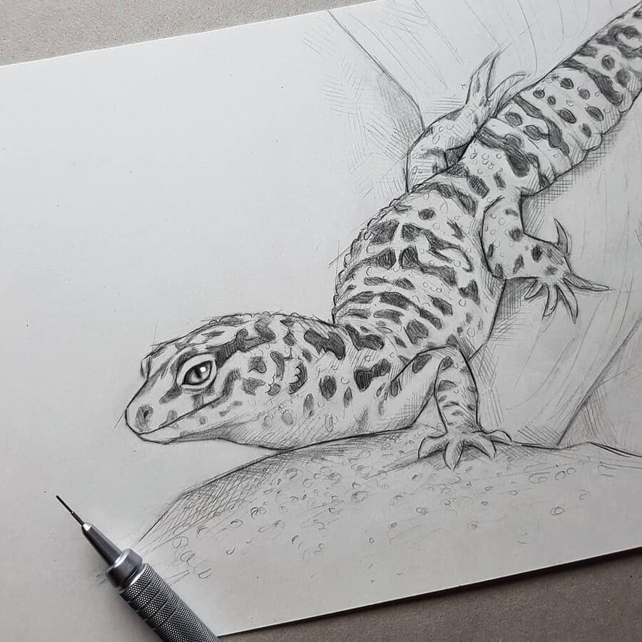 11-Lizard-on-the-sofa-Kleevia-www-designstack-co