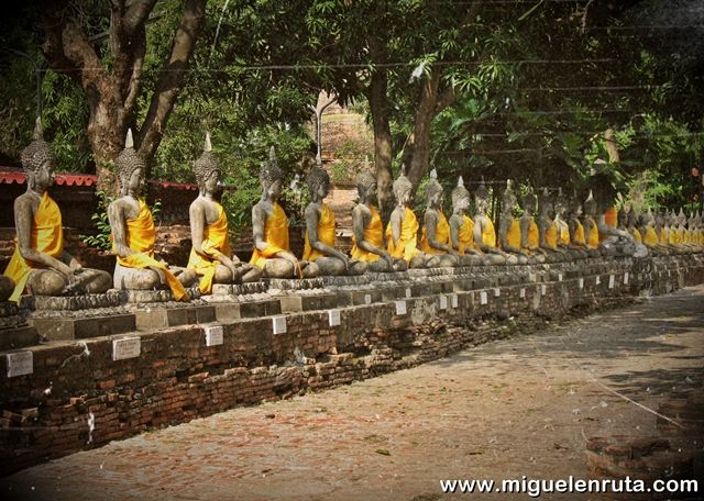 Budas-Ayutthaya-Tailandia