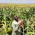 Global $500M Data Drive Aims to Boost Harvests, End Hunger