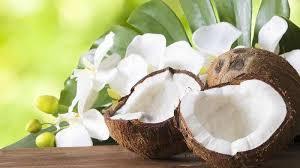 khasiat daging kelapa