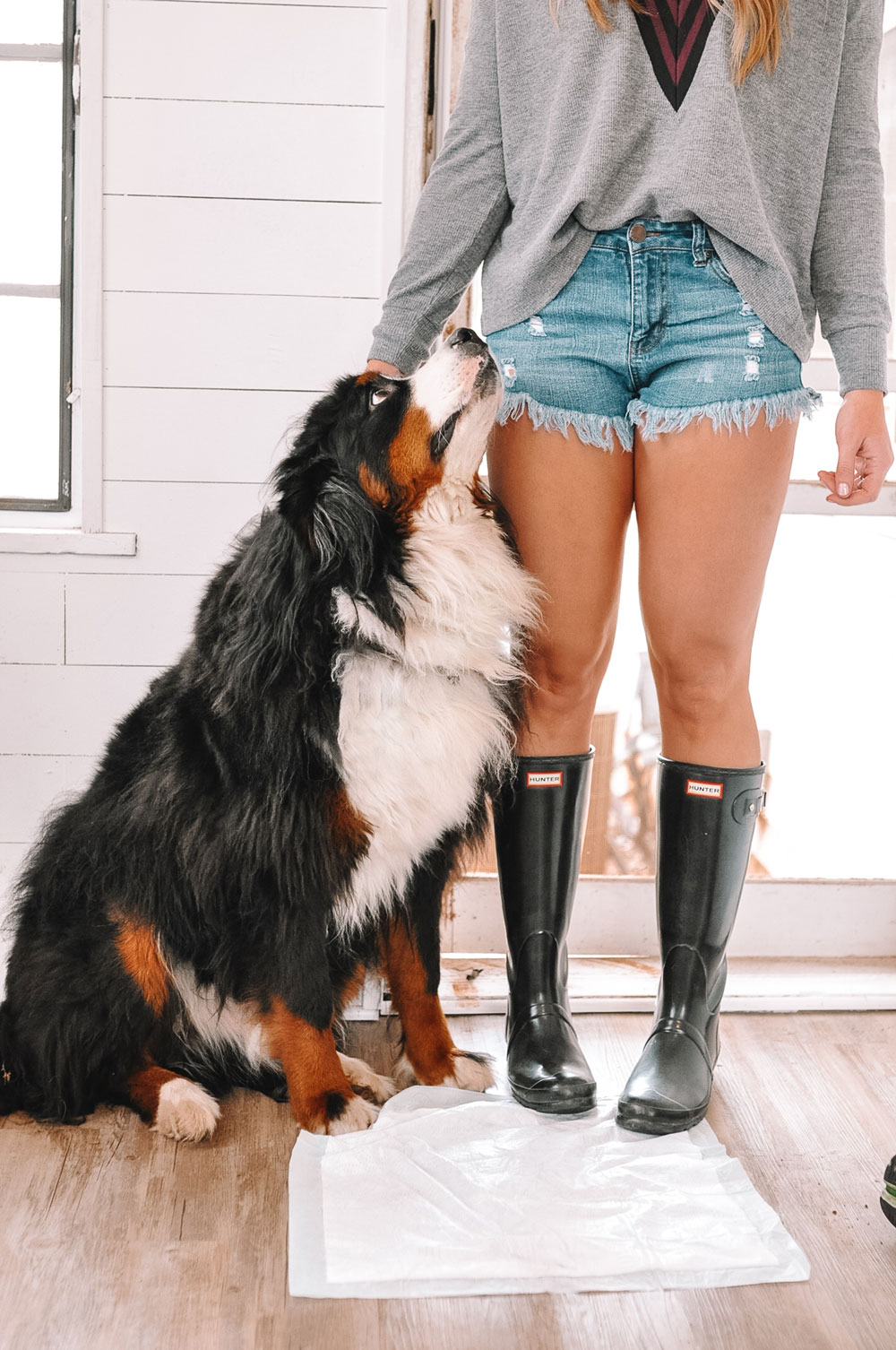 Oklahoma blogger Amanda Martin uses Hartz Dog Pads to keep red dirt out of her house
