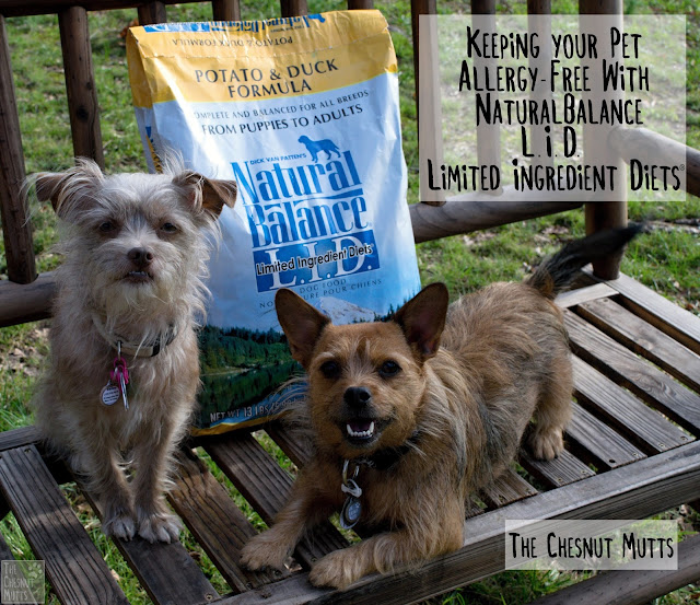 Keeping your Pet Allergy-Free With #NaturalBalance L.I.D. Limited Ingredient Diets®