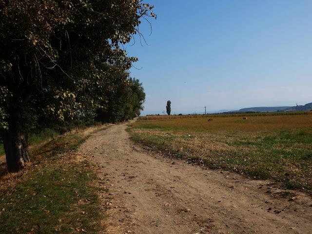 Pylista boczna droga w Rumunii - jest ich już coraz mniej :(