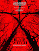 Pelicula Blair Witch: La bruja de Blair (2016)