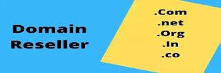 Domain reseller online business