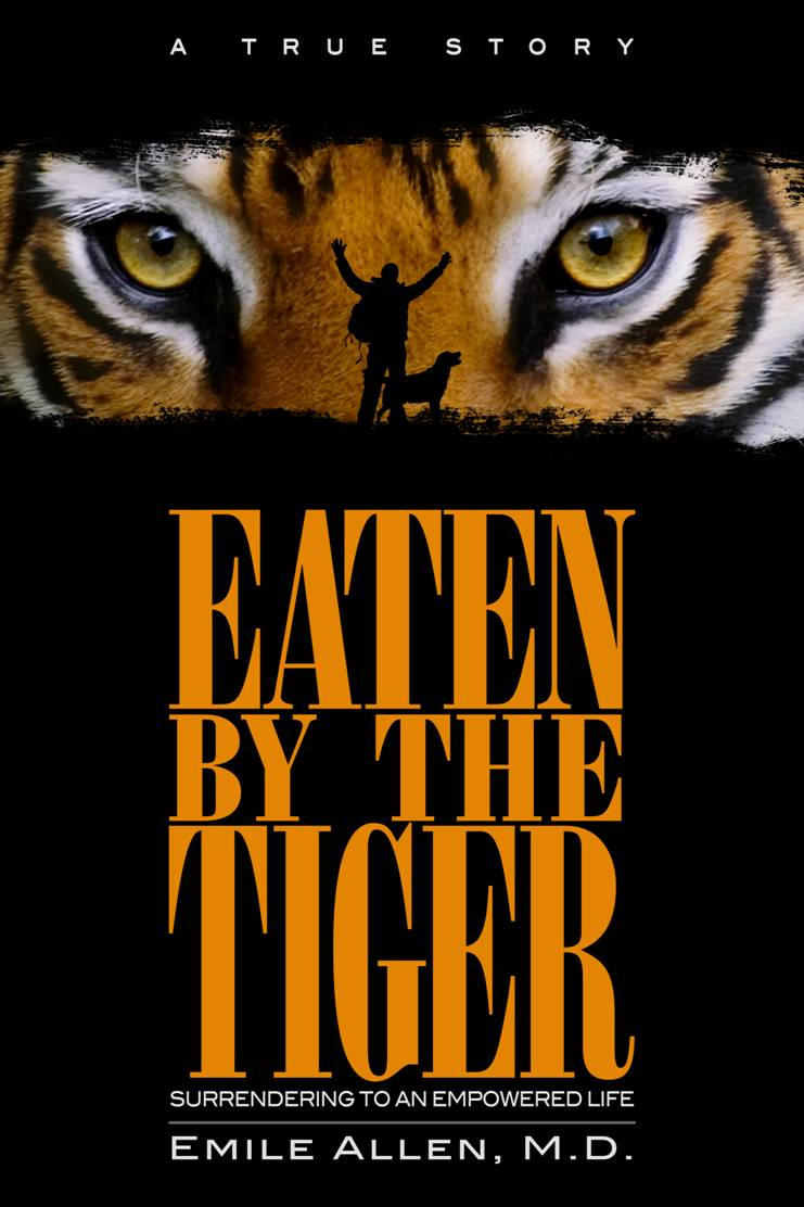 Eaten By The Tiger by Emile Allen MD Interesting