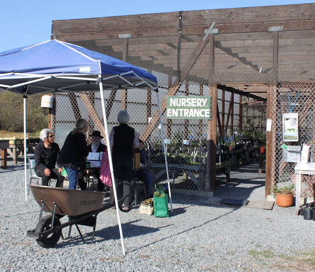 customers gathered outside the San Bruno Mountain Watch Nursery Entrance on plant sale day