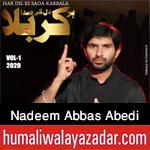 https://aliwalayazadar.blogspot.com/2020/08/nadeem-abbas-abedi-nohay-2021.html
