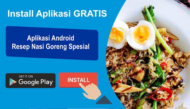 aplikasi android resep nasi goreng