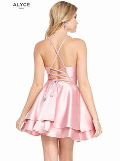 High Neckline Alyce Homecoming Dress Rosewood Color Back side
