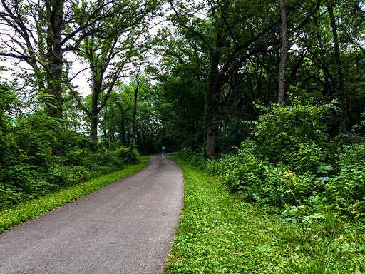 Along the Capital City State Trail in Fitchburg WI