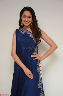 Pragya Jaiswal in beautiful Blue Gown Spicy Latest Pics February 2017 092.JPG